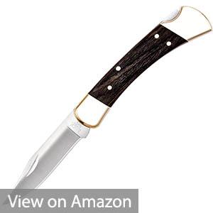 Buck Knives 110 Folding Hunter Knife