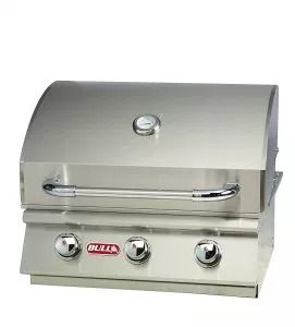Bull Outdoor Products 69009 Gas Grill Review